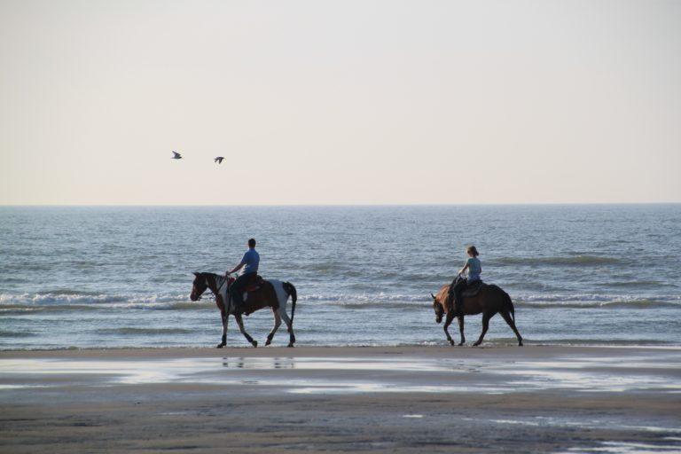 Equitation sur la plage - Cote d'Opale