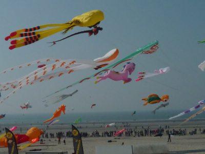 Festival des Cerfs-volants - Berck Plage - Cote d'Opale