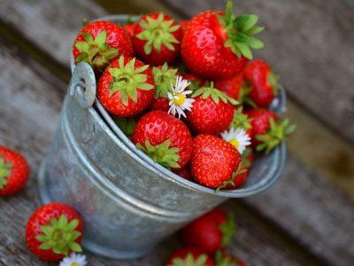 La fête des fraises - Samer - Cote d'Opale